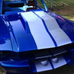 1967 Ford Mustang-BLUE BOSS 4