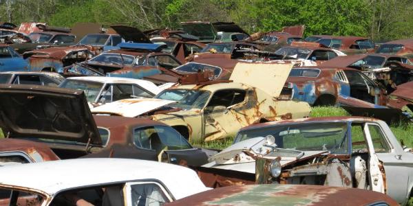 Shiloh030 abandoned muscle cars
