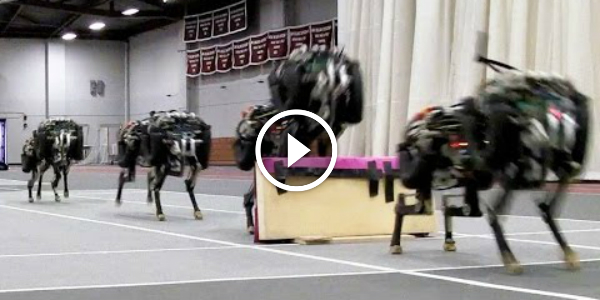 FASTEST LEGGED ROBOT The First CHEETAH RUN JUMP Over Obstacles 33