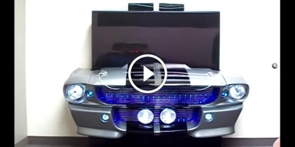 One-Of-A-Kind ELEANOR SHELBY TV 11