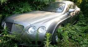 200 Abandoned Luxury Cars graveyard Chengdu China 7