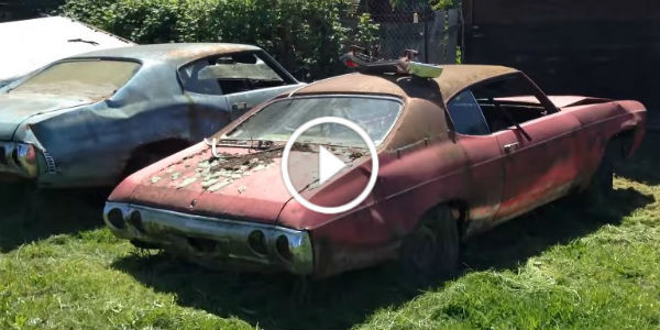 Abandoned Car Dealership Junkyard Full Old-School Muscle Cars oregon 51