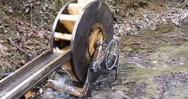 water wheel generator 2