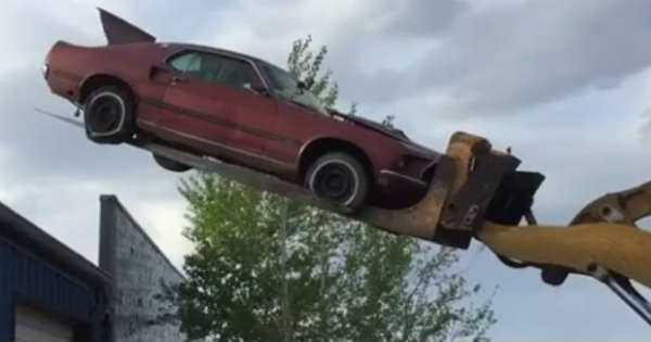 1969 Ford Mustang Mach 1 Dangling Over A Shed Got Rescued From ...