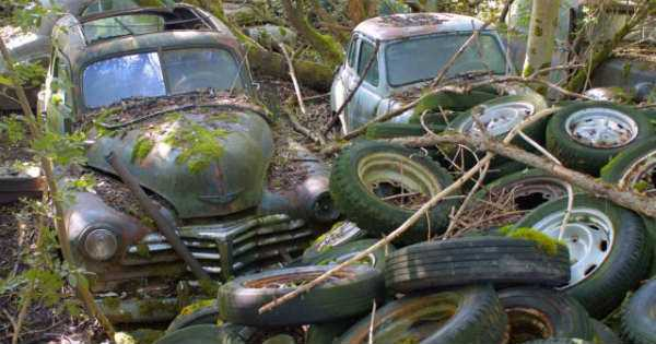 -1500 Classic Cars Switzerland Greatest Vintage Car Graveyard 3