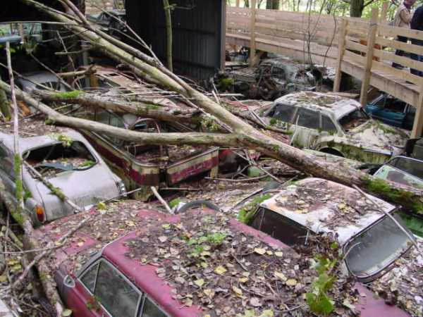 1,500 Classic Cars Switzerland Greatest Vintage Car Graveyard 4