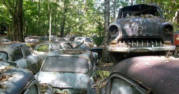 -1500 Classic Cars Switzerland Greatest Vintage Car Graveyard 6