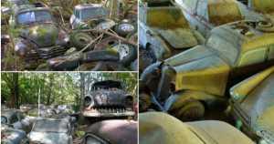 -1500 Classic Cars Switzerland Greatest Vintage Car Graveyard 8