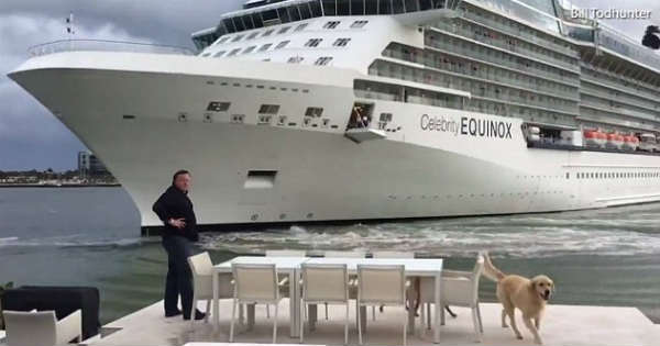 Cruise Ship Causes Chaos Crashes 6