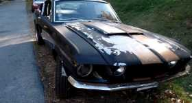 1967 Mustang Shelby roars once AGAIN 4