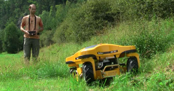 Modern Grass Cutter lawnmower 2