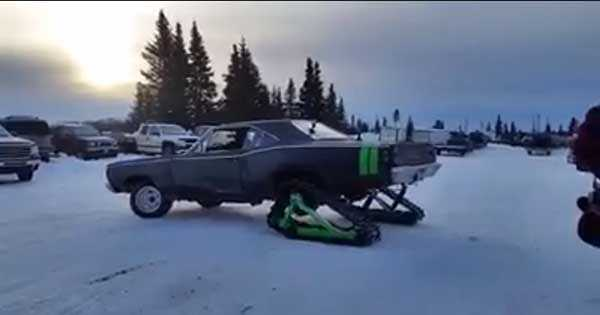 Dodge Coronet SuperBee Snow 1
