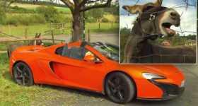 Donkey Damage Orange McLaren 650S Spider Bite Carrot 3