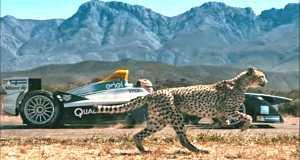 Cheetah vs Formula E Race Car - Head To Head 11