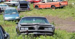 Difference Between A Salvage Car and Scrap Car 1
