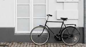 Multi-functional Bikes versus Mono-functional Bikes 1